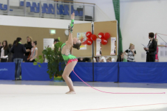 Regionalmeisterschaften Süd, Rhythmische Sportgymnastik, 2015