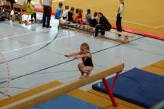 sachsenmeisterschaften_turnen_2011_20110517_1379177311
