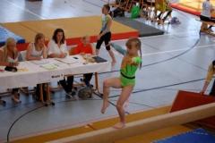 sachsenmeisterschaften_turnen_2011_20110518_1019400346