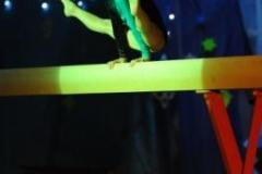 weihnachts-show_2011_2_20111220_1557694480